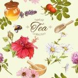 Herbal tea seamles pattern Stock Images