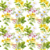 Herbal tea. Seamless pattern: herbs chamomile, mint, teapot, teacup. Watercolor Stock Image