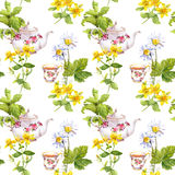 Herbal tea. Seamless pattern: herbs chamomile, mint, teapot, teacup. Watercolor Royalty Free Stock Images