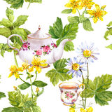 Herbal tea. Seamless pattern: herbs chamomile, mint, teapot, teacup. Watercolor Stock Photos