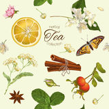 Herbal tea seamless pattern. Vector herbal tea seamless pattern with linden,jasmine flowers,and cinnamon. Design for tea, natural cosmetics, baking,candy and Royalty Free Stock Image