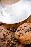 Herbal tea and some fresh cookies. Cup of herbal tea and some fresh cookies closeup on wooden table Stock Photo