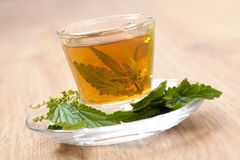 Herbal tea with stinging nettle inside teacup, on wooden flooring Stock Photo