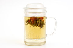 Herbal tea with tea flower in glass cup Royalty Free Stock Photos