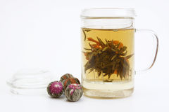 Herbal tea with tea flower in glass cup Stock Image