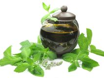 Herbal tea in tea-pot among mint Royalty Free Stock Images