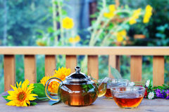 Herbal tea in teapot and cup. Royalty Free Stock Photos