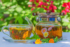 Herbal tea in teapot and cup. On a table in the garden stock photo