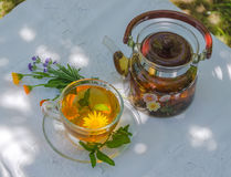 Herbal tea in teapot and cup. On a table in the garden royalty free stock photography