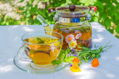 Herbal tea in teapot and cup. On a table in the garden royalty free stock photos
