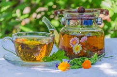 Herbal tea in teapot and cup. On a table in the garden stock photos