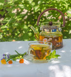 Herbal tea in teapot and cup. On a table in the garden royalty free stock photo