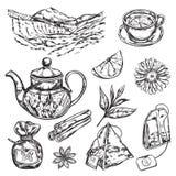 Herbal Tea Teapot Royalty Free Stock Photo
