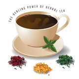 Herbal tea with text and heaps of herbs EPS10 vector Stock Photo