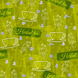 Herbal tea theme floral background.  Seamless vector pattern. Stock Images