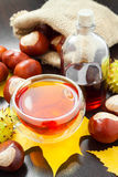 Herbal tea or tincture of chestnuts and sack with horse chestnut Stock Images