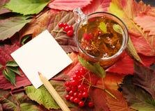Herbal tea. Traditional medicine. Stock Photography