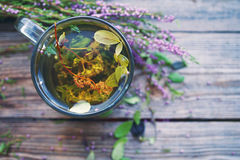 Herbal tea in a transparent glass mug and forest herbs Royalty Free Stock Photography