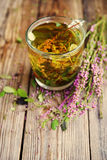 Herbal tea in a transparent glass mug and forest herbs Stock Images