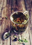 Herbal tea in a transparent glass mug and forest herbs Royalty Free Stock Photo