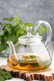 Herbal tea in a transparent teapot on the table and sprigs of fresh Melissa lemon balm and mint Royalty Free Stock Photography