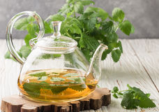 Herbal tea in a transparent teapot on the table and sprigs of fresh Melissa lemon balm and mint Stock Photos