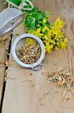 Herbal tea from tutsan dry in strainer Royalty Free Stock Images