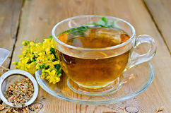 Herbal tea from tutsan in strainer with cup Stock Images