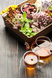 Herbal tea, various herbs and flowers Royalty Free Stock Photography