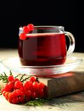 Herbal tea with viburnum. Royalty Free Stock Image