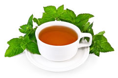 Herbal tea in a white cup with mint Royalty Free Stock Photography