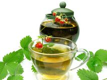 Herbal tea with wild strawberry Stock Images