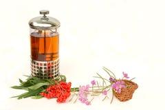 Herbal tea of willow-herb Stock Image