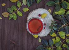 Herbal tea on the wooden brown table Stock Photography