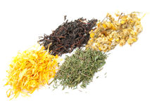 Herbal teas Royalty Free Stock Photo