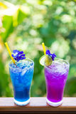 Herbal Thailand for health drink Stock Image