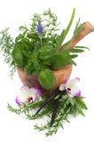 Herbal Therapy Stock Photography