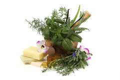 Herbal Therapy Royalty Free Stock Photography