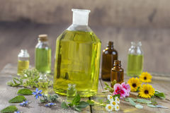 Herbal therapy and aromathrapy concept: alternative treatment with fresh medicinal herbs and flowers on wooden. Herbal therapy and aromathrapy concept royalty free stock photos