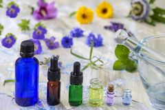 Herbal therapy. essential oils and medical flowers and herbs on old blue cracked wooden background copy space stock photos