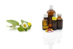 Herbal therapy. Healing herbs and medicinal bottles Royalty Free Stock Image