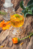 Herbal tincture with calendula Stock Image
