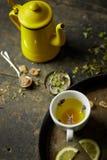 Herbal tisane infusion Stock Image