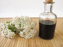 Herbal tonic with yarrow Stock Photos