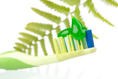 Herbal toothpaste Stock Images