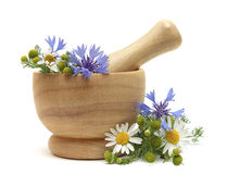 Herbal Treatment - camomile and cornflowers Stock Photo