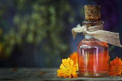 Herbal treatment: medicinal tincture from flowers of calendula royalty free stock photo