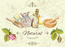 Herbal vintage banner Royalty Free Stock Photography