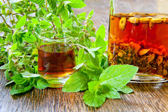 Herbal vodka Stock Image