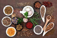 Herbal Wellness Royalty Free Stock Images